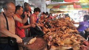 yulin-carne-perro--478x270