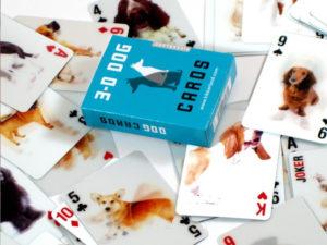 carte 3d cani